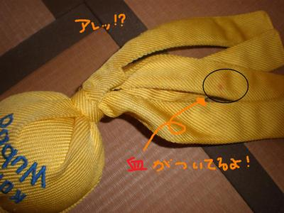 2010_0708_150258p7080001