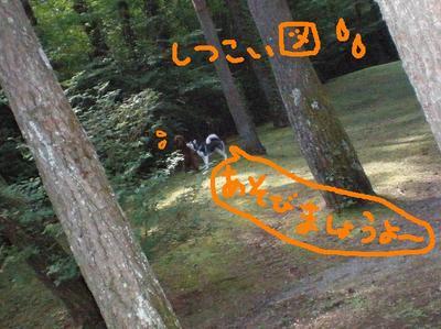 2010_0918_100845p9180069