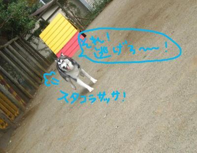 2010_1003_104159pa030031