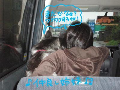 2010_1010_080236pa100053