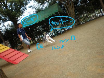 2010_1017_100233pa170116