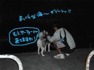 2010_1016_052654pa160112