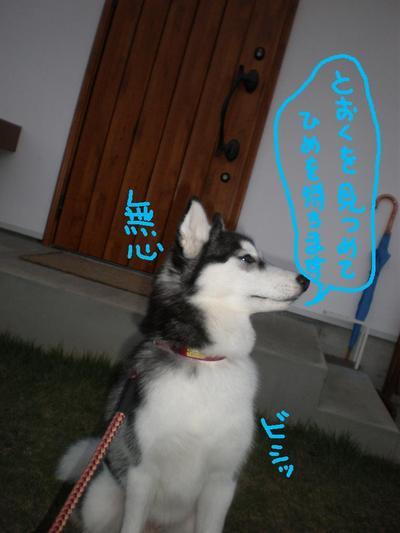 2010_1027_165014pa270106