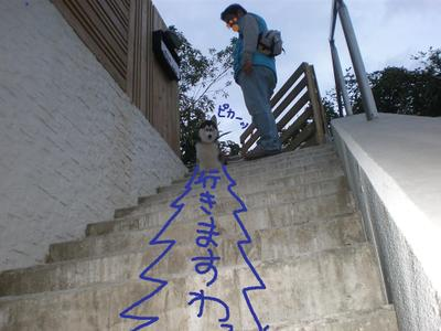 2010_1121_162409pb210184