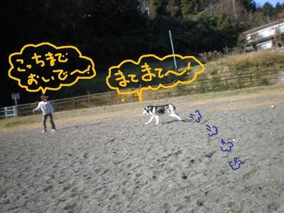 2010_1212_112956pc120061