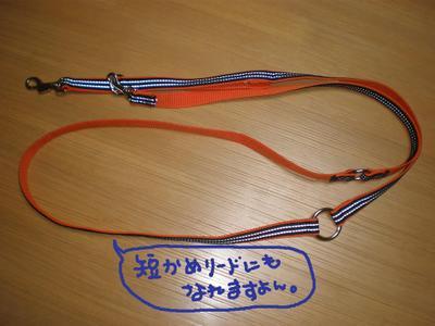2010_1215_183102pc150085