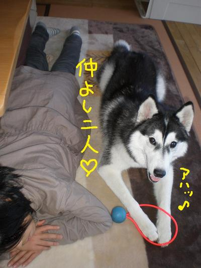 2011_0116_143050p1160015