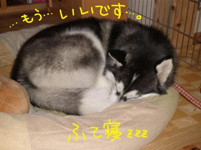 2011_0124_081648p1240072