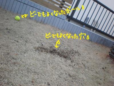 2011_0223_144143p2230027