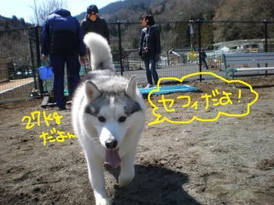 2011_0326_100839p3260024