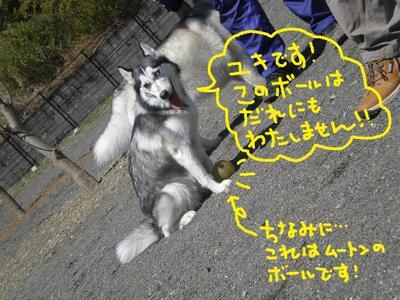 2011_0326_114050p3260070