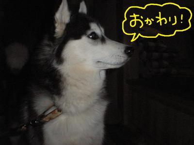 2011_0327_185224p3270027