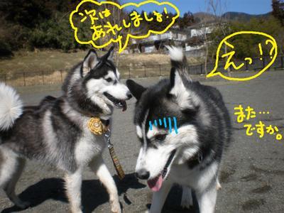 2011_0326_092736p3260014