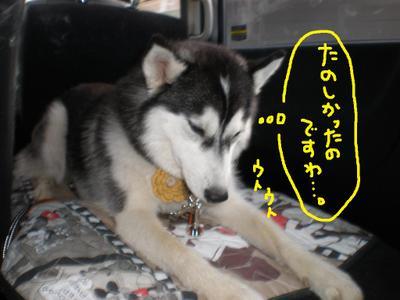 2011_0326_150423p3260088