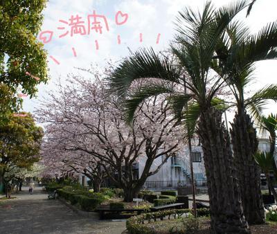 2011_0410_081233dsc00089