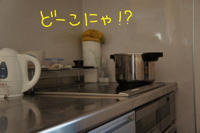 2011_0415_061534dsc00135