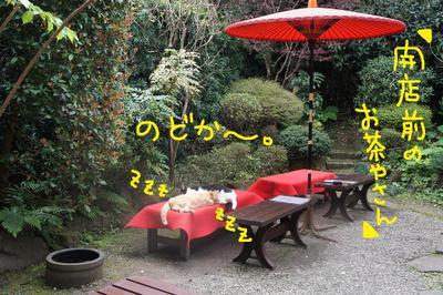 2011_0416_105920dsc00211