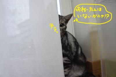 2011_0510_172249dsc01170