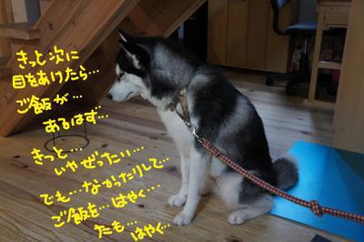 2011_0602_055546dsc01621