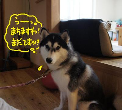 2011_0602_055909dsc01627