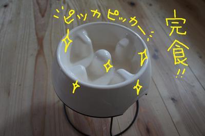 2011_0602_074818dsc01632