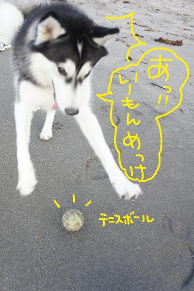2011_0604_053121dsc01672_2