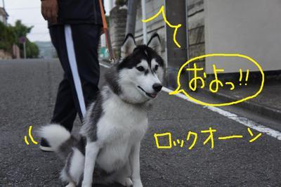 2011_0607_044536dsc01734
