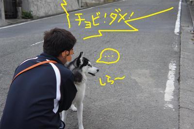 2011_0607_044726dsc01735