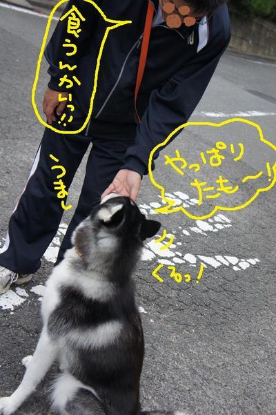 2011_0607_045104dsc01741
