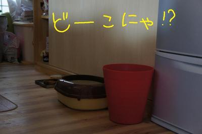 2011_0611_071029dsc01798
