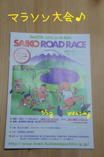2011_0619_183313dsc02456