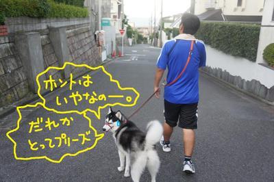 2011_0712_045946dsc03161