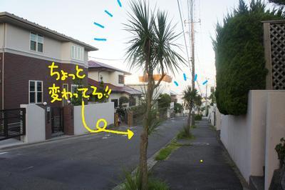 2011_0716_051339dsc03178