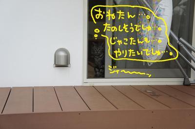 2011_0801_181759dsc03453