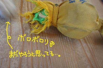 2011_0818_071827dsc03610