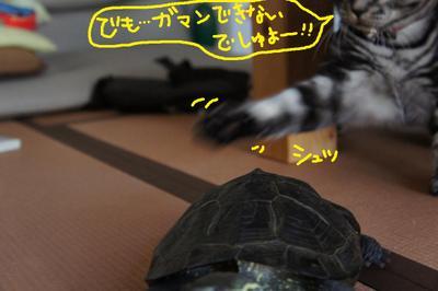 2011_0815_170047dsc03602