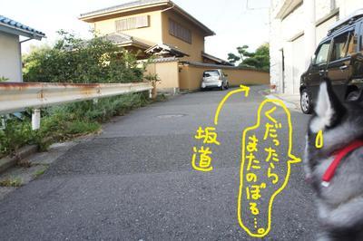 2011_0904_055425dsc03932