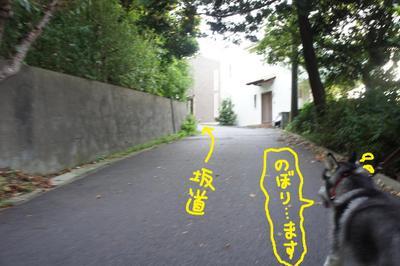 2011_0904_060130dsc03942