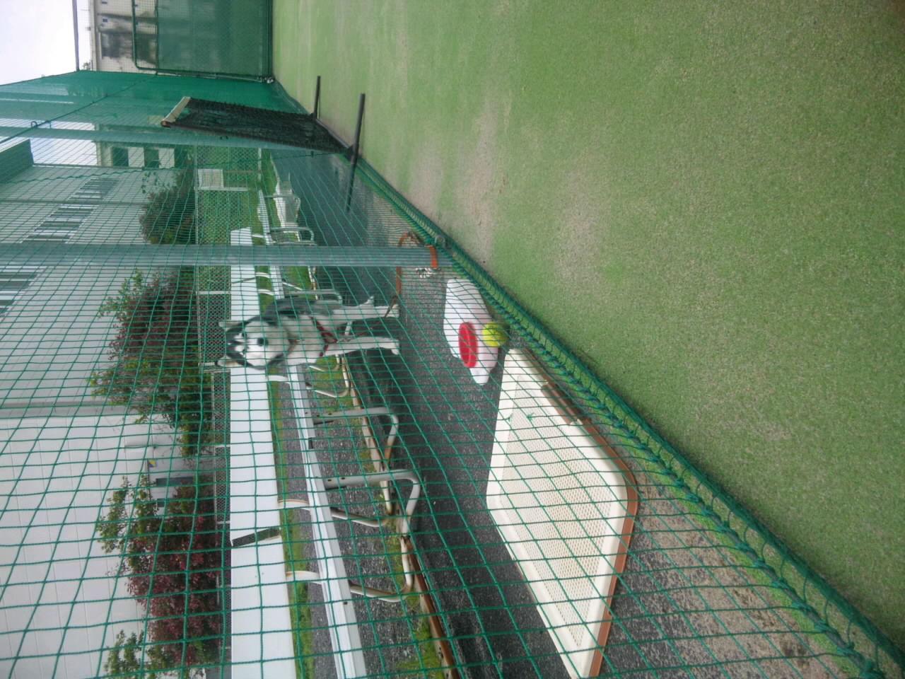 テニス・なう